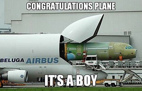 funny-airplane-birth1.jpg